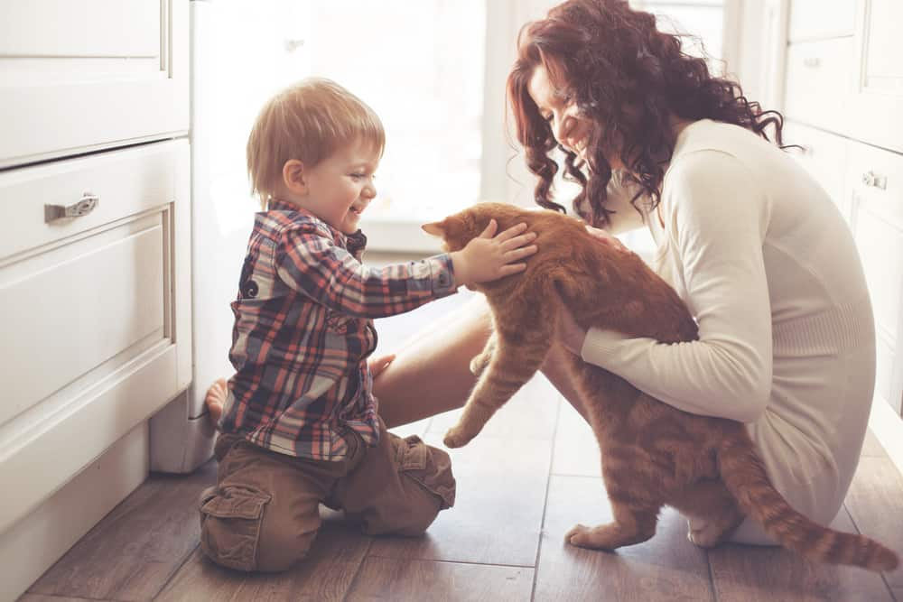 mother and son with orange tabby cat