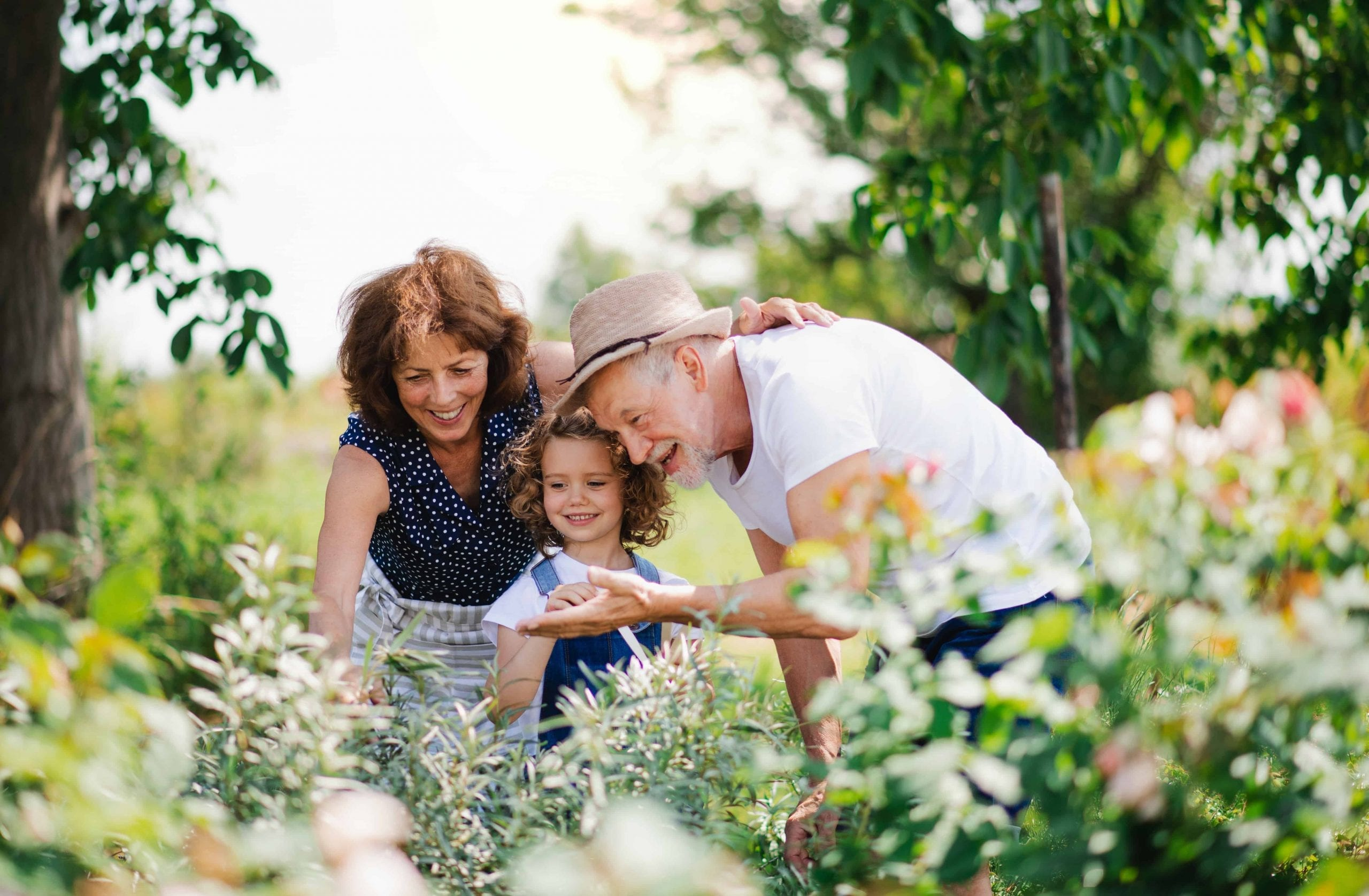 grandparents with granddaughter looking at plants